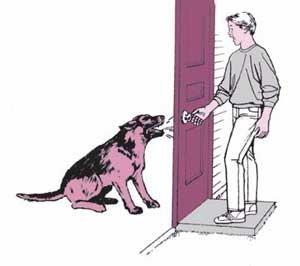 Consejos de seguridad sencillos para proteger tu hogar
